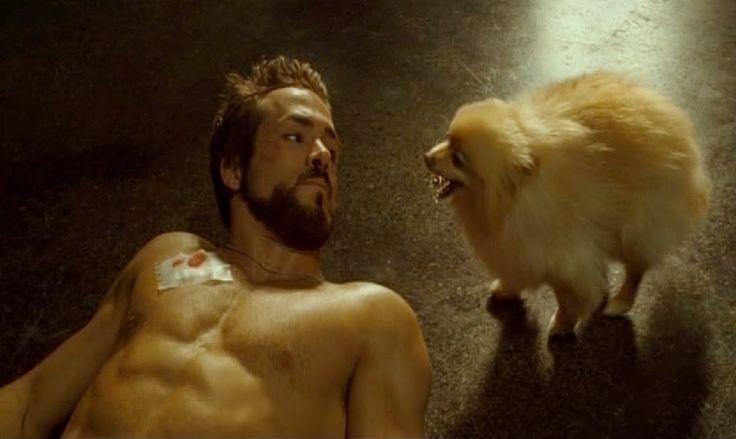 "Image de Ryan Reynolds face à un chien/vampire dans ""Blade : Trinity""."